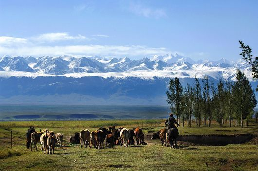 直击南疆:一场美不胜收的完美童话