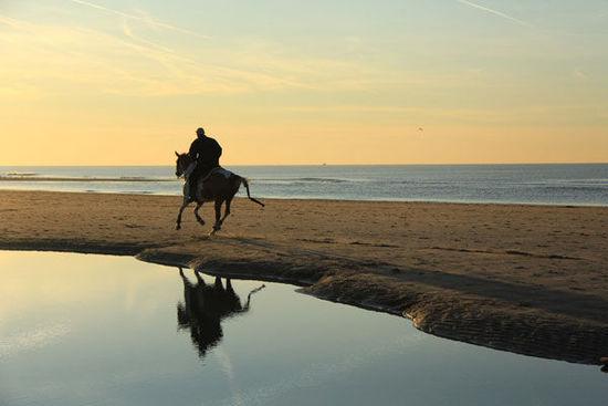 马背上穿山过湖骑马游进阶指南
