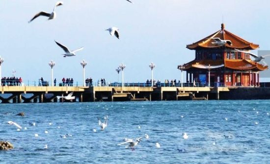 第一站是青岛栈桥