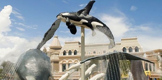 青岛旅游极地海洋世界儿童的天地