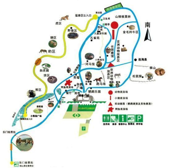 青岛森林野生动物世界自助游攻略